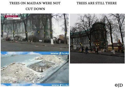 Maidan_trees