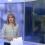 Посолство на Украйна с открито писмо до Българска национална телевизия във връзка с репортажа за ескалацията на събитията в Донбас
